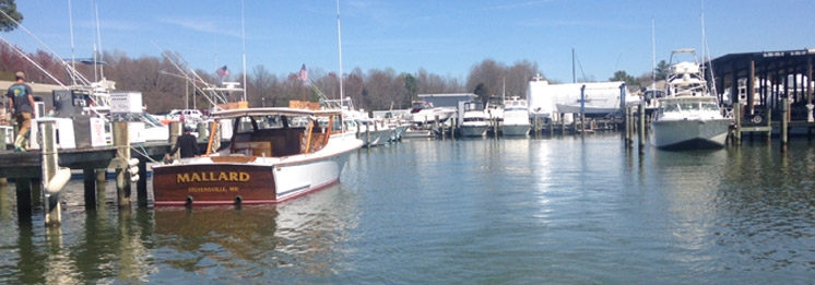 Kentmorr marina a sport fisherman 39 s paradise right on the for Annapolis fishing charters